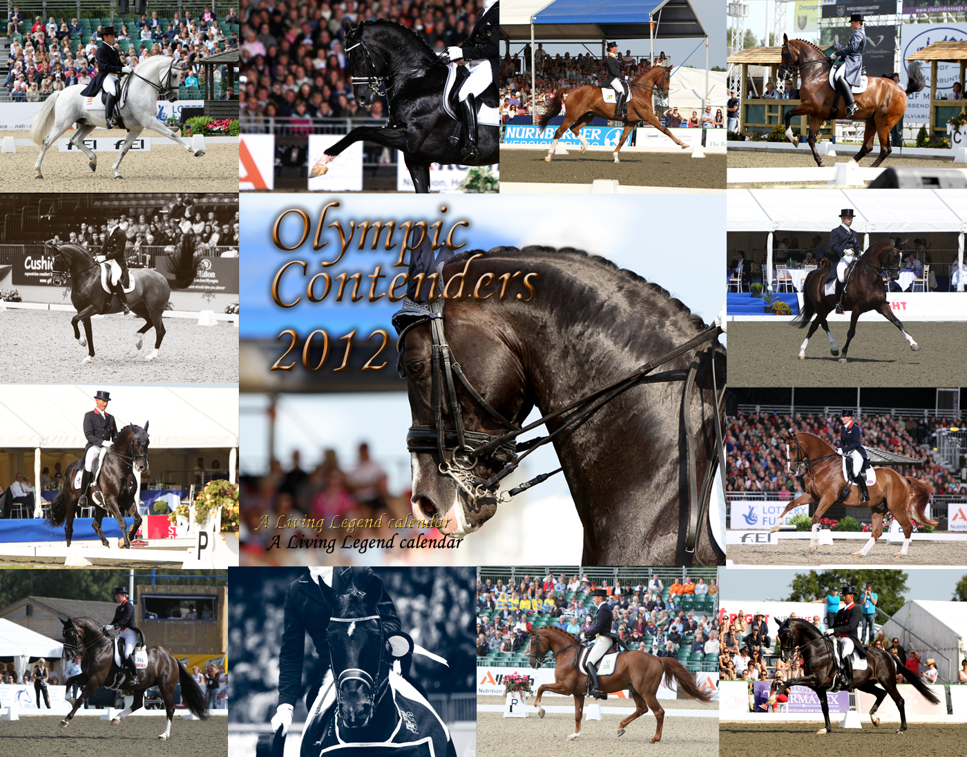 Living Legend Dressage Calendars for 2012 available for Christmas gifts